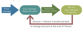 RD account explained